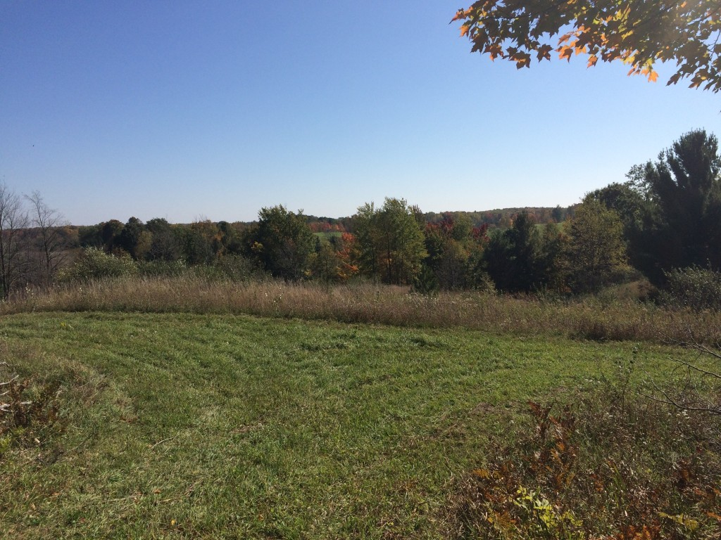 Michigan Hunting Land Properties for Sale