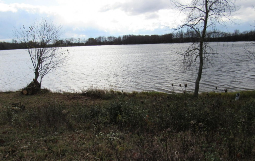 Land for Sale in Upper Michigan